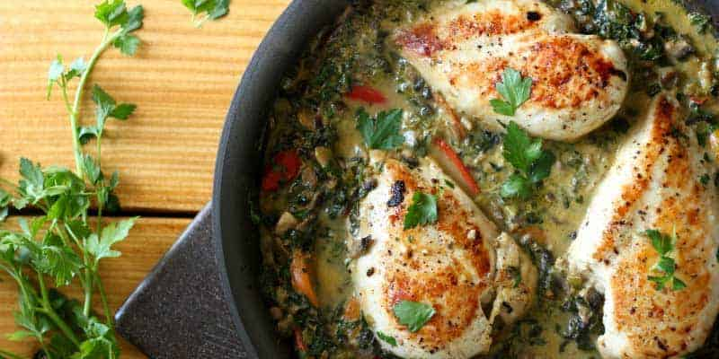 Vegetarian low carb recipes high protein