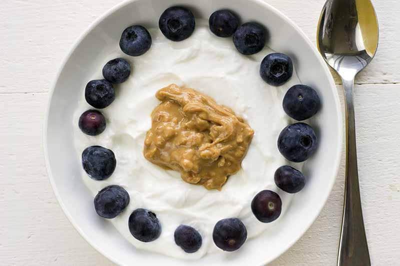 Yogurt with blueberries